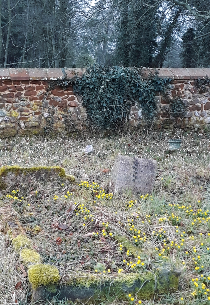 graveyard with winter flowers